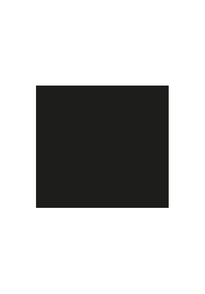 Progettazione logo azienda agricola DryStudio