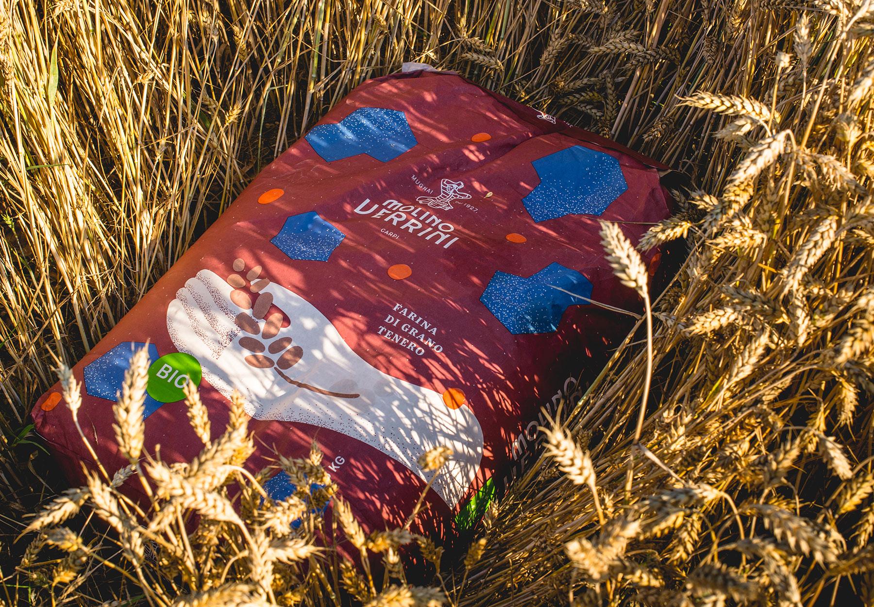 Flour packaging design-DryStudio